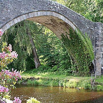 Brig O' Doon bridge, Alloway, Scotland by FranWest