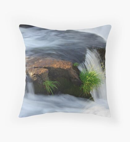 Clinging for dear life Throw Pillow