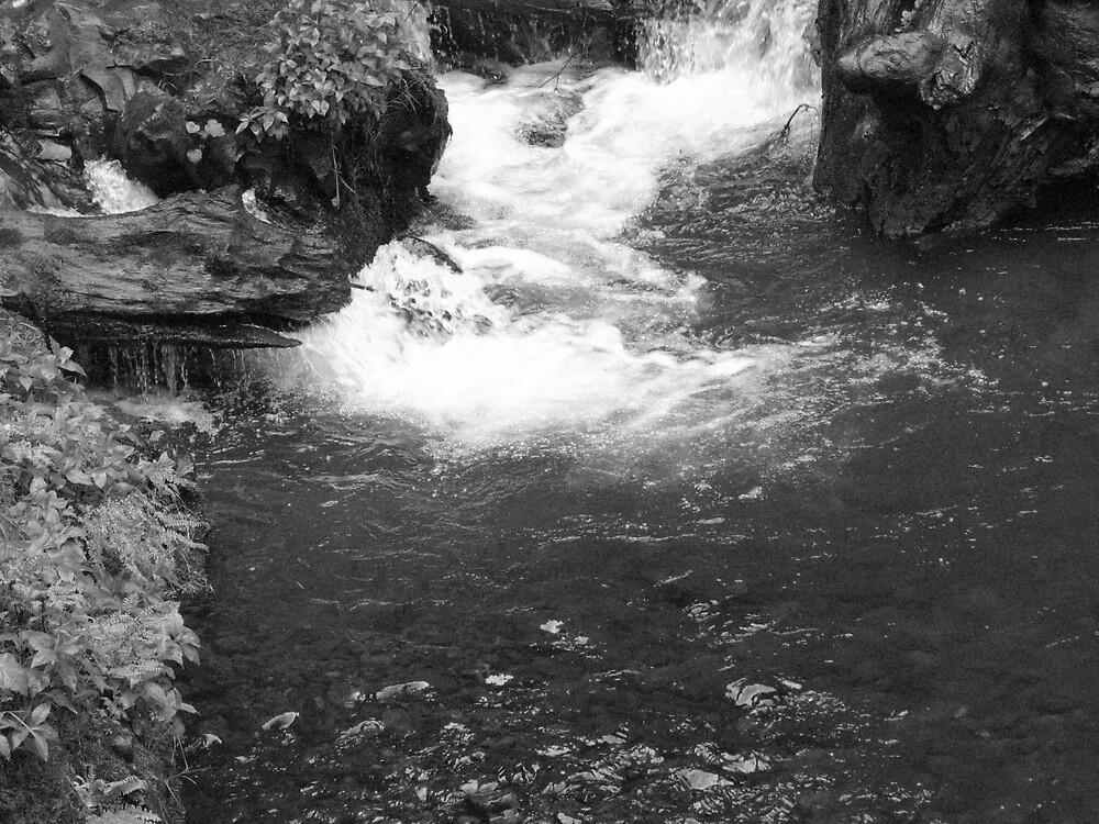 Georgia Water by vivianlea