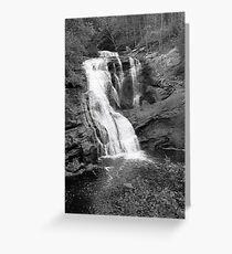 Bald River Cypress Falls Greeting Card