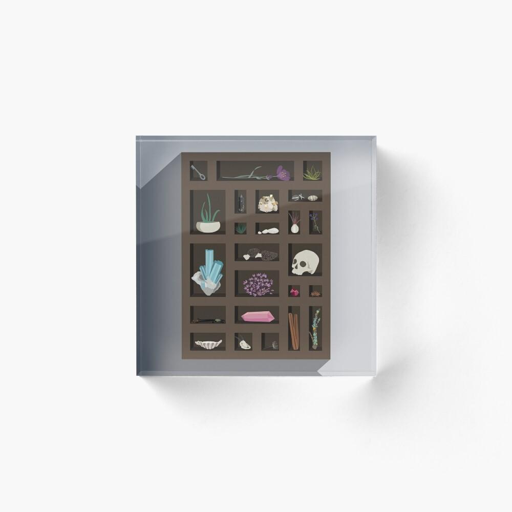 Cabinet of Curiosities Acrylic Block