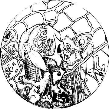 Petri Dish 01 by Gaius