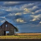 The Crib in the Field by Sheryl Gerhard