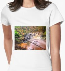 Exotic long exposure Women's Fitted T-Shirt