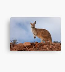 I am Australian ~ Euro Canvas Print