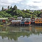 Castro Panorama by Graeme  Hyde