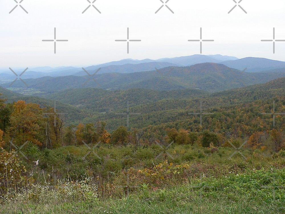 Virginia Scenic Vista by kevint