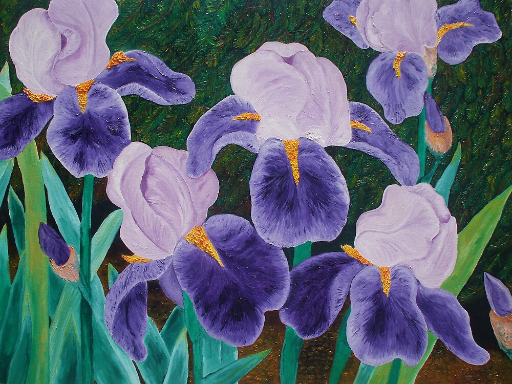 Purple Iris by Suzanne Buckland