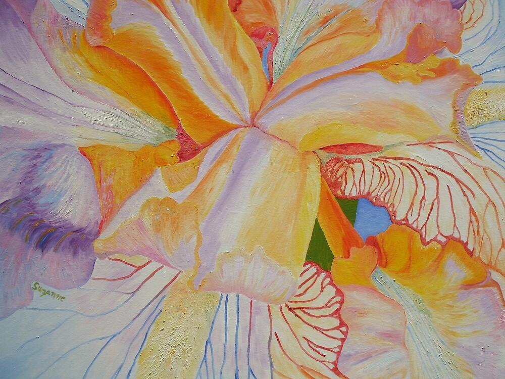 Rainbow Iris by Suzanne Buckland
