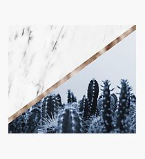 Cool marble desert blooms Photographic Print