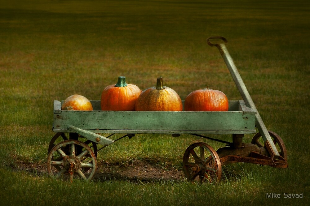 Autumn - Pumpkins - Free ride by Michael Savad