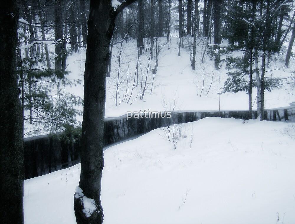 Glossy Creek by pattimus