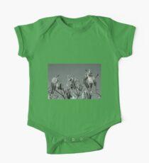 Milkweed HDR Kids Clothes