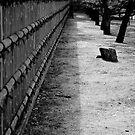 Zen wall by AquaMarina