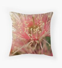 Corymbia ficifolia (red flowering gum - pink variety) Throw Pillow