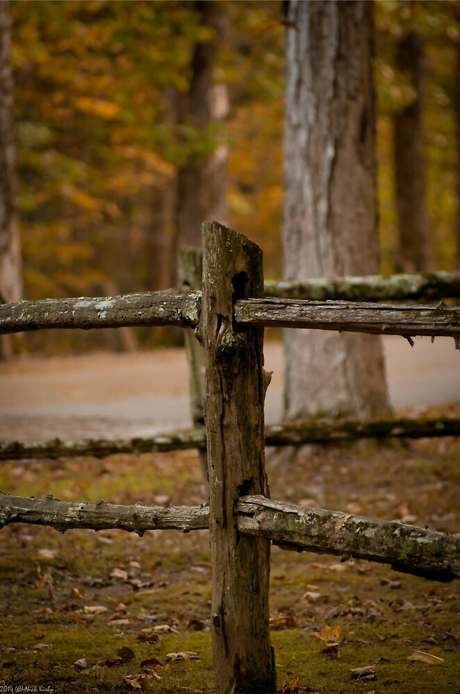 The Old Rail Fence by Nick Kirby
