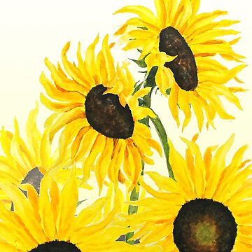 yellow sunflowers 2017 by ColorandColor