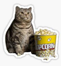 popcorn cat Sticker