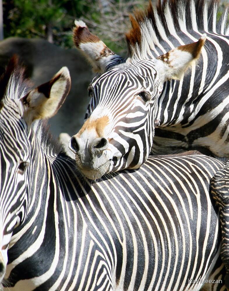 Zebras doing the wild thing by Kat Meezan
