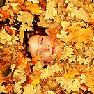 Autumn Daisy by Peta Hurley-Hill