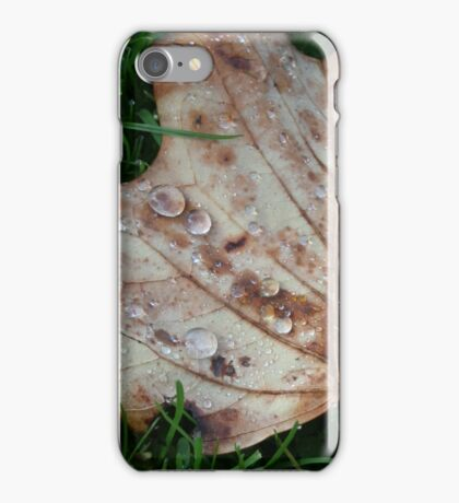 Fall of the Leaf Melancholia iPhone Case/Skin