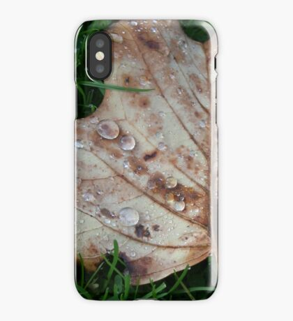 Fall of the Leaf Melancholia iPhone Case/Skin