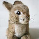 "Lil"" Cuddly Rabbit by patjila"
