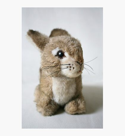 "Lil"" Cuddly Rabbit Photographic Print"