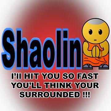 Shaolin by BulletMa9net