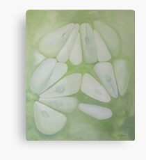 cucumber Canvas Print