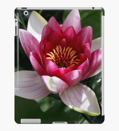 Water lily shy homeowner included iPad Case/Skin
