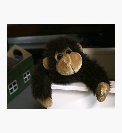 Plush Monkey Business Photographic Print