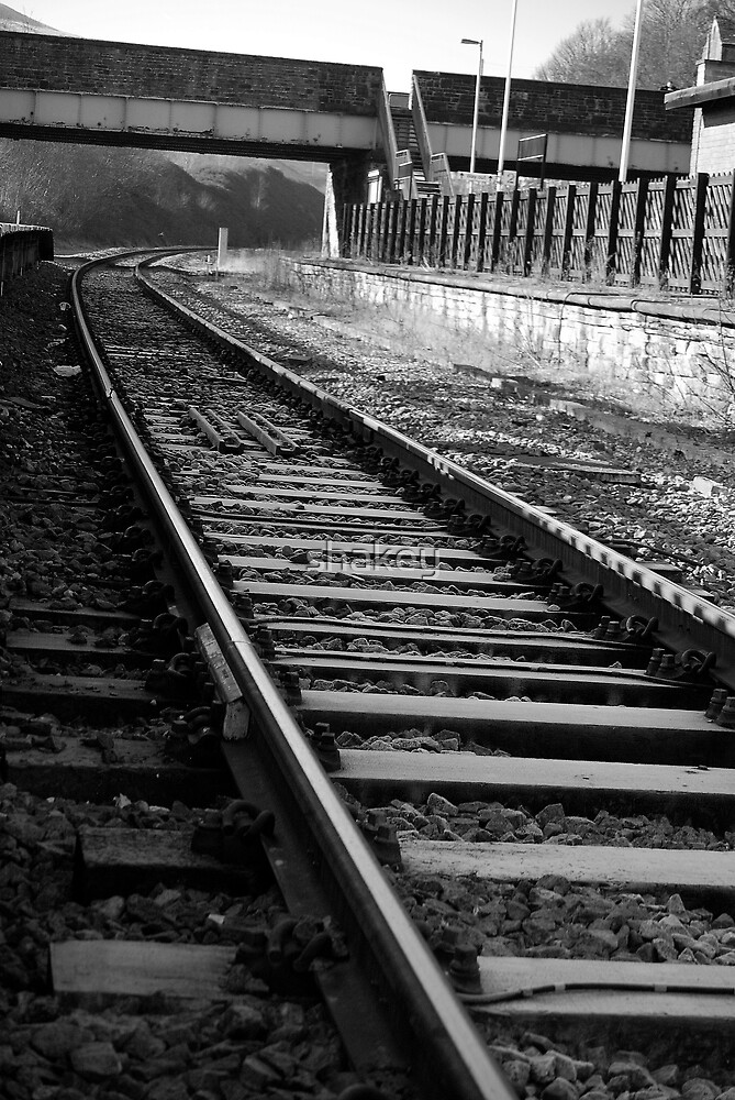 Tracks by shakey