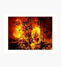 Bush Fire.... Art Print