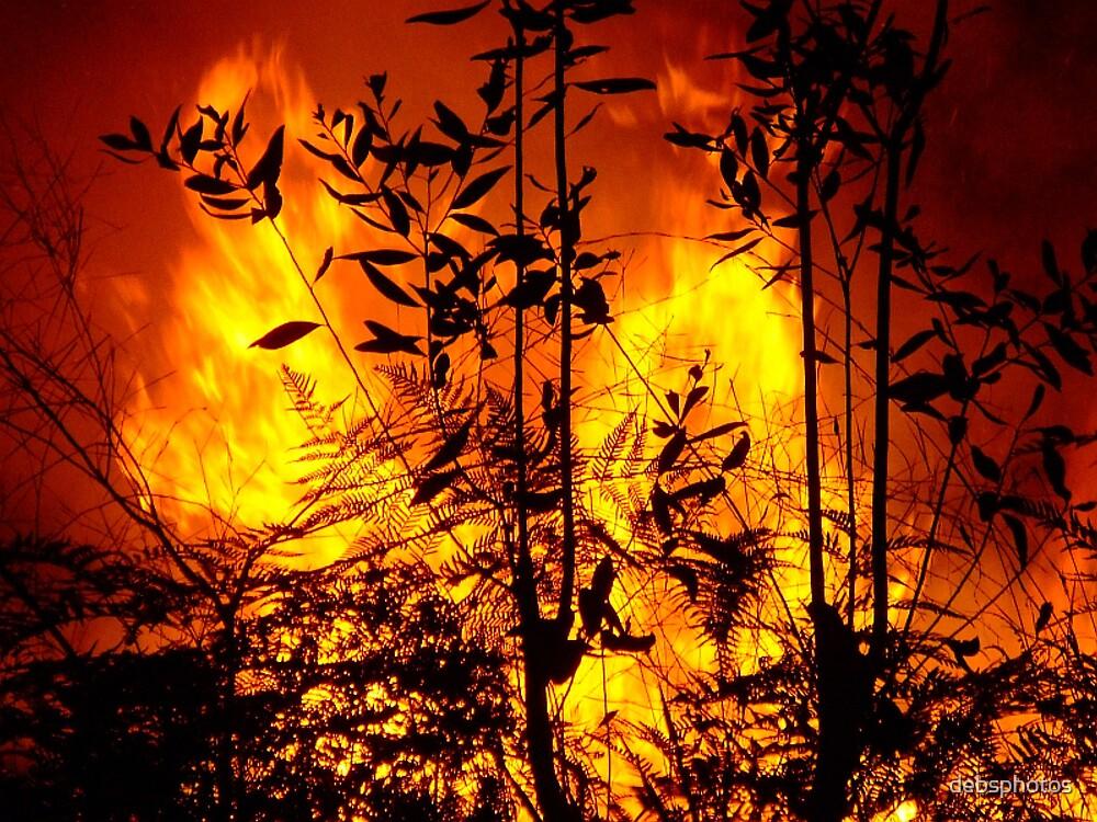 Bush Fire.... by debsphotos