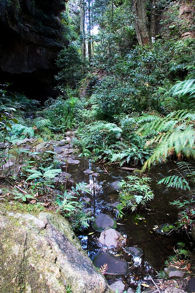 Neates Glen Blue Mountains by MiImages