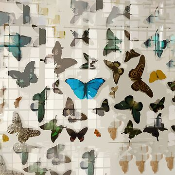 Butterflies in the Greenhouse by annahannah