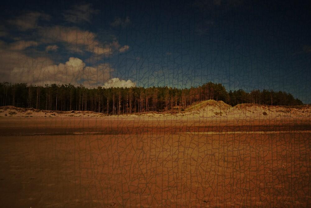 Desertion by Andrew Jackson