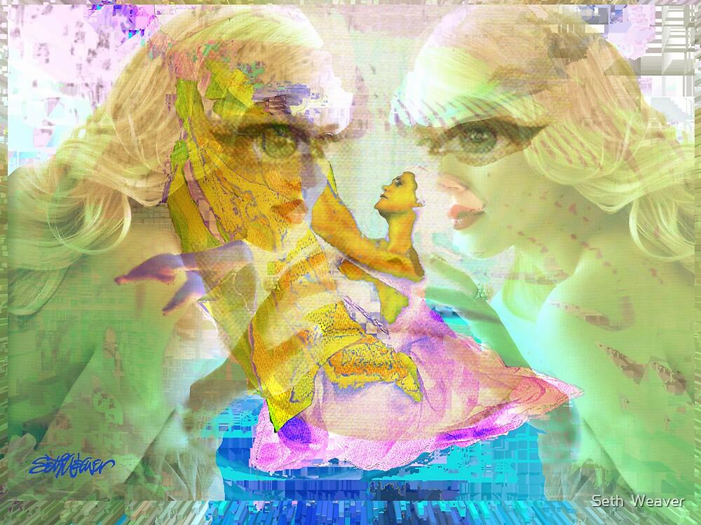 Enchantment by Seth  Weaver