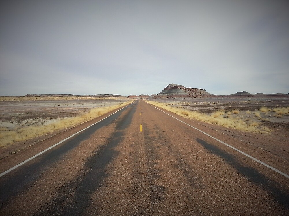 Painted Desert by nimbusphoto