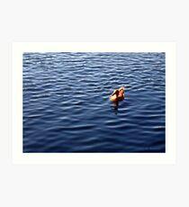 Afternoon Swim Art Print