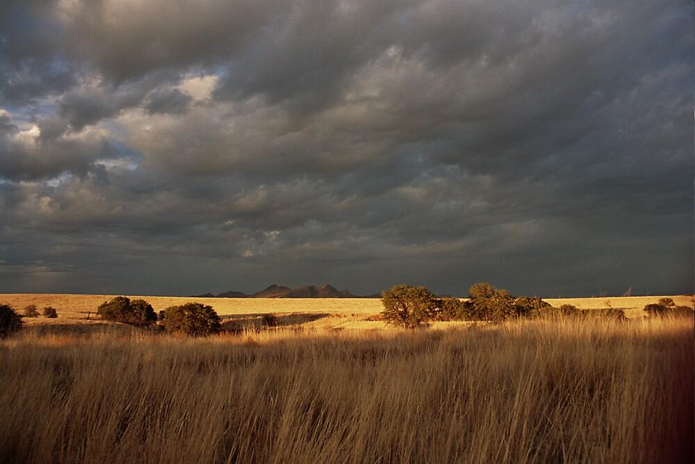 audubon research ranch by tea9word