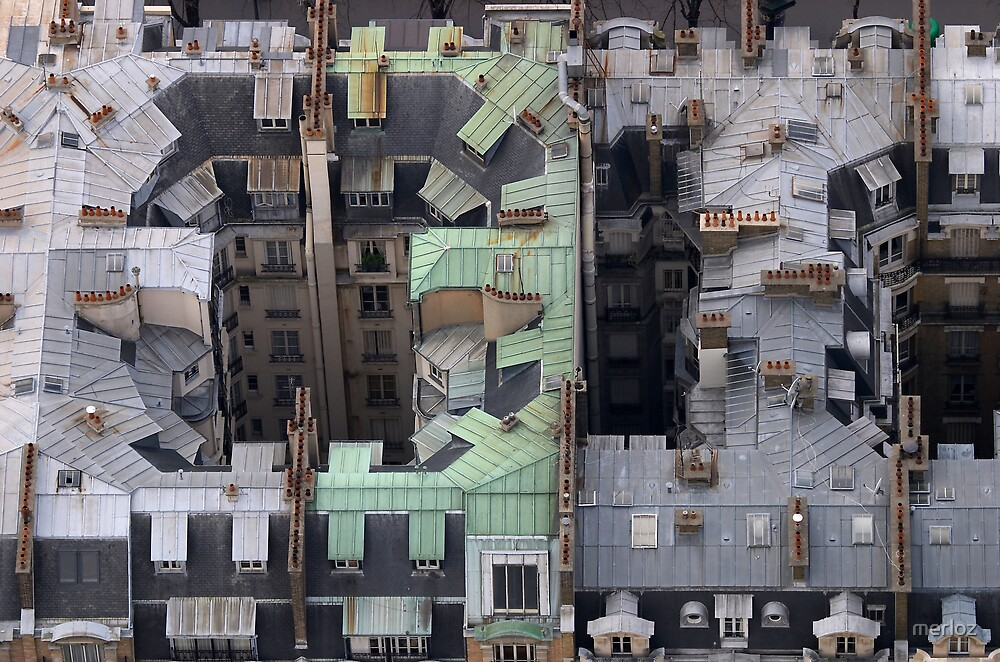 Paris 's roof by merloz