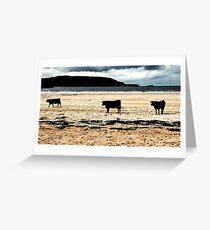 Beach Cows Greeting Card