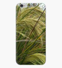toetoe (New Zealand native grasses) iPhone Case
