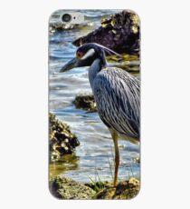 Yellow Crowned Night Heron 2 - Florida iPhone Case