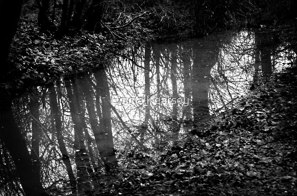Muddy reflections by Emma Kearsey
