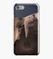 The Spirits of Castle Hill .6 iPhone Case/Skin