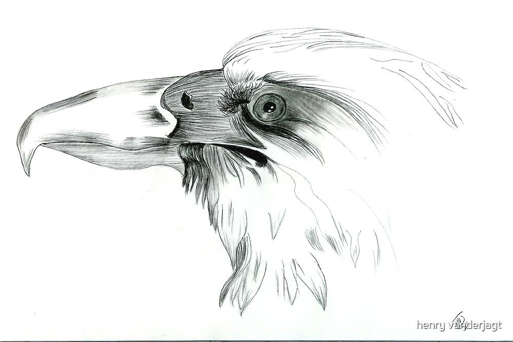 EAGLE ONE by Henry VanderJagt