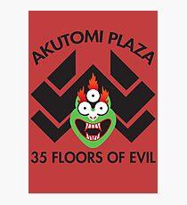 Akutomi Plaza Samurai Photographic Print